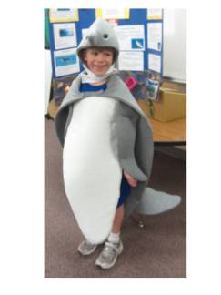 My Grandson the Dolphin